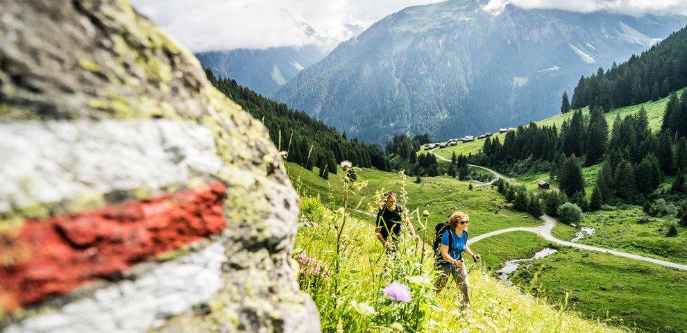 Wanderung-Alpe-Garnera-Vorarlberg-Tourismus-Dietmar-Denger-02.jpeg