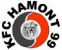 KFC Hamont