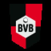 SV BVG 49